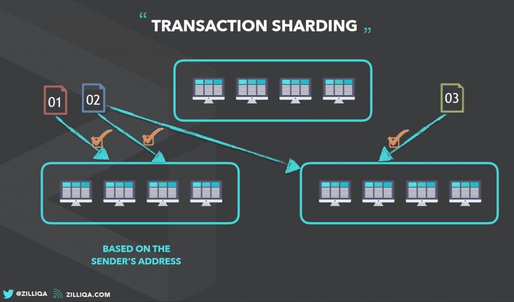 zilliqa transactions sharding