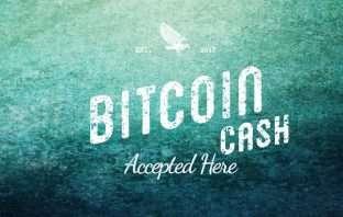 Bitcoin Cash kaufen Tutorial