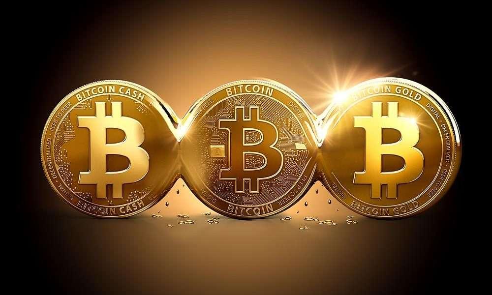 coin bitcoin news