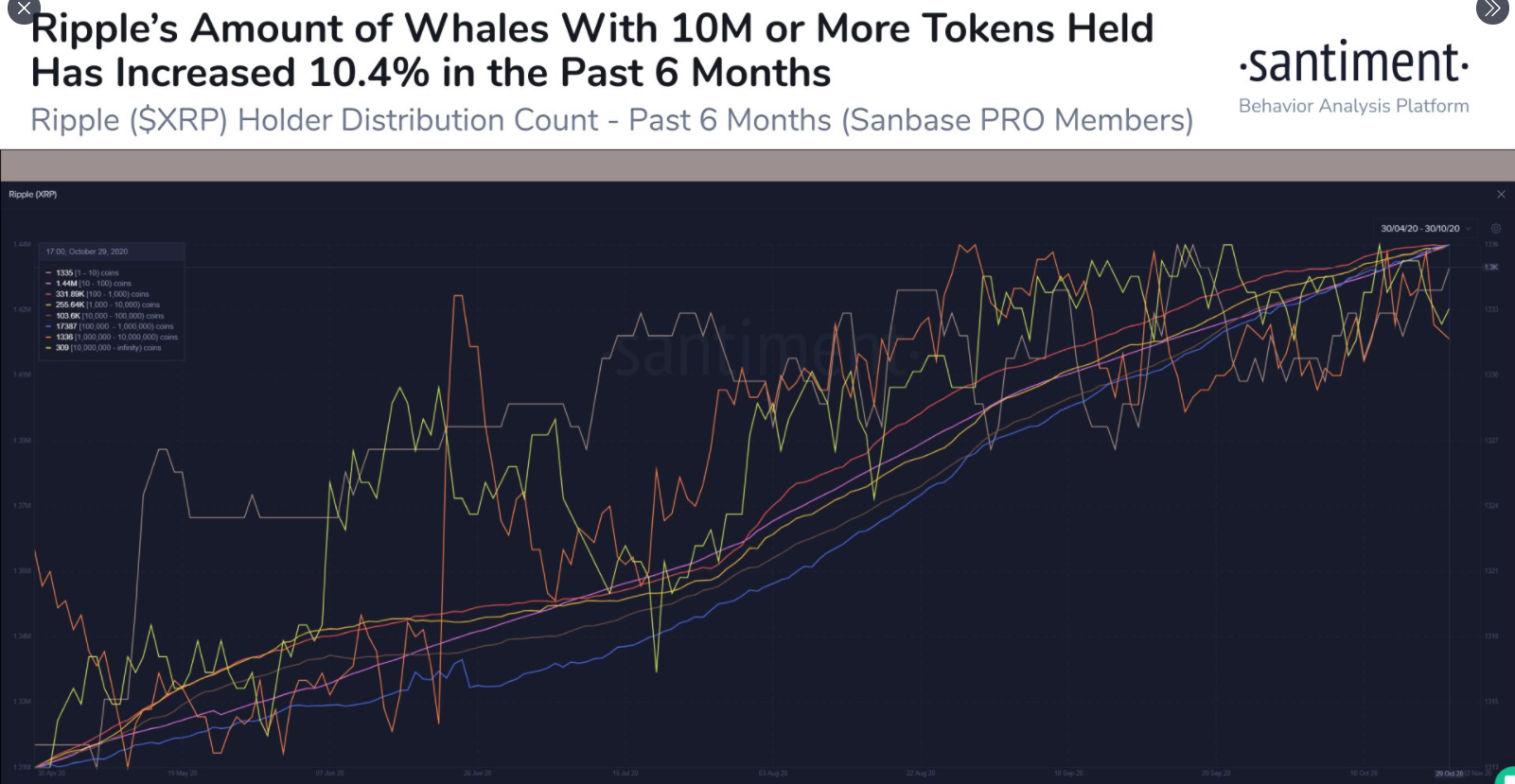 ripple xrp whales