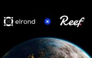 Elrond Reef